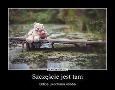 My Eyes, Lamb, Teddy Bear, Fun, Photography, Animals, Nice, Nature, Fotografia