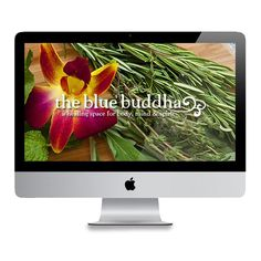 Thanks to @Delux Multimedia our new website is live in honor of our 2-Year Anniversary as a healing space for body, mind & spirit. www.sfbluebuddha.com