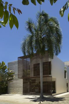 Sou Fujimoto House N | Architecture U0026 Nature | Pinterest | Sou Fujimoto And  Architecture