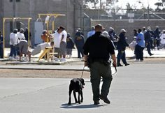 """Gruesome murder!  Was it organs stolen for organ harvesting?  Cannibalism?  Wicked revenge?  Or organs used for black magic?  """"Nearly 15 hours after a riot at a Northern California prison, guards found a missing inmate sawed nearly in two, with his abdominal organs and most chest organs removed, his body folded and stuffed into a garbage can in a shower stall a few doors from his cell.""""  http://www.nydailynews.com/new Pic:  Inmates in yard ofmedium-security California State Prison, Solano."""