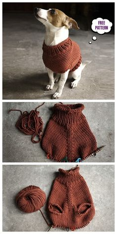 Knit The Juno Dog Jumper Free Knitting PatternYou can find Knitting patterns and more on our website.Knit The Juno Dog Jumper Free Knitting Pattern Knitted Dog Sweater Pattern, Knit Dog Sweater, Dog Sweaters, Dog Coat Pattern, Knit Headband Pattern, Knitting Sweaters, Knitted Baby, Knitting Patterns Free Dog, Jumper Patterns