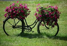 ♥ Where else but Austria! Better watch my bicycle.