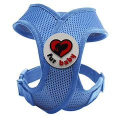 Best Choke-Free Dog Harness to keep your pet safe and comfortable. Harnesses are far superior to a collar to protect the neck and throat of your pet. Sizes for small dogs breeds and puppies. High quality similar to Puppia and Webmaster. Perfect to use in dog training or for a puppy. MEASURE YOUR DOG USING THE SIZE CHART IN THE IMAGES BEFORE BUYING. 100% Satisfaction Guarantee (Blue, XS) FurBaby http://www.amazon.com/dp/B00NZ34KI2/ref=cm_sw_r_pi_dp_bjGIub0N7KKB0