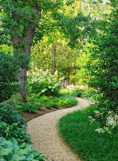 Beautiful garden path with flower beds and lawn all around.