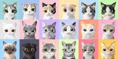 Sugar Cat & Candy Doggie™ Portrait on Behance