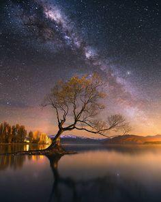 dylangehlken_photography x Wanaka, New Zealand