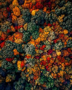 Striking Drone Photography by Martin Sanchez Creative aerial shots by Martin Sanchez a. zekedrone, gifted photographer, adventurer, drone pilot, and visual artist from USA. Smoke Bomb Photography, Autumn Photography, Aerial Photography, Halloween Photography, Scenery Photography, Photography 101, Lifestyle Photography, Landscape Photography, Autumn Aesthetic