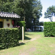 Foto's   Camping de Morgenster Camping, Pergola, Outdoor Structures, Plants, Campsite, Outdoor Pergola, Plant, Campers, Tent Camping