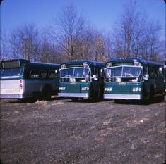 New York Subway, Nyc Subway, Metropolitan Transportation Authority, Bus City, Buses And Trains, Bus Coach, Vintage New York, Busses, New York City