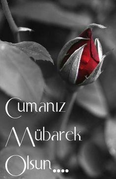 Jumma Mubarak Quotes, Jumma Mubarak Images, Islam Facts, Flower Wallpaper, Islamic Quotes, Allah, Good Morning, Prayers, Messages