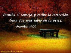 #camino #vida