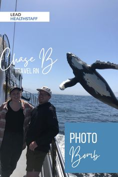 Travel Nursing, Take That, Whales, Boating, Board, Ships, Whale, Sailing, Planks