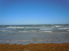 Mustang Island, Corpus Christi, TX