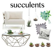 """Plants Plants Plants"" by eyesofperidot ❤ liked on Polyvore featuring interior, interiors, interior design, home, home decor, interior decorating, Ethimo, Jayson Home, NDI and succulents"