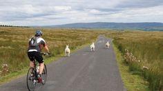 6 Long Distance Cycling Tips | Coach