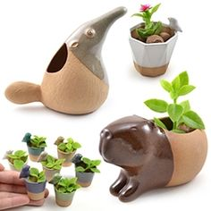 Cumbuca Chic Ceramics - Priscilla Ramos of São Paulo, Brazil sculpts these beautiful Capybara, Anteater, Fox, tiny Bird planters and more. Honestly, I didn't even know i wanted a capybara planter till now.