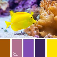 bright violet, bright yellow, brown, color match, color solution for home, dark-violet, ginger brown, lilac, shades of violet, Yellow Color Palettes.