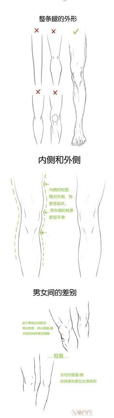 legs male female muscles comparsion tutorial how not to 드림팩토리 그림공부봇 on
