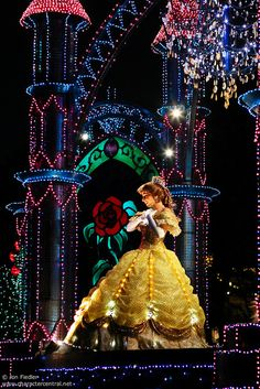 Belle in the nighttime parade.