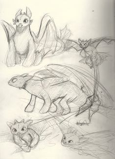 Just some scribbles of my bae toothless :)