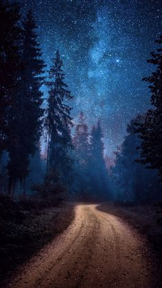 ~~Winding road Milky Way astrophotography, forest somewhere in Estonia by Hendrik Mändla~~