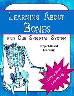 CHSH - Skeletal System Teaching Resources and Downloads