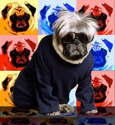 Cheeky Andy Warhol Pug