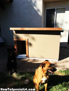 This was my first DIY project in wood. It is for two large dogs. Large Dog House, Build A Dog House, Dog House Plans, Shelter Dogs, Animal Shelter, Animal Rescue, Pet Dogs, Pets, Chihuahua Dogs