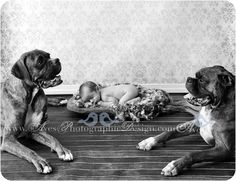 Dallas Fort Worth Baby Photography Newborn Pictures Black and White Baby Photos Baby Photo Ideas Aves Photography Organic Baby Photography Newborn with Dogs in Studio-5928