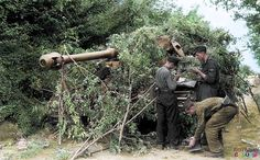 """A Panzer crew, belonging to 1./s.SS-Pz.Abt.101 """"Leibstandarte-SS-Adolf-Hitler"""" are here seen camouflaging their Panzer VI 'Tiger' tank with tree branches in the vicinity of Villers-Bocage, Normandy, in June 1944. Date unconfirmed but possibly taken on the 14th of June, on the Ancienne Route de Caen (the old Caen Road), where Michael Wittmann's company spent the night of 12/13 June..."""