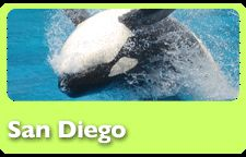 Sea World.  San Diego, CA.  Noah had tears streaming down his cheeks during the dolphin performance.  It was amazing!