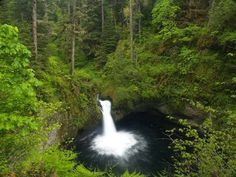 Punch Bowl Falls on the Eagle Creek trail at the Columbia River Gorge in Portland. I want to do this the next long trip I go to Portland. Oregon Road Trip, Oregon Travel, Road Trip Usa, Oregon Hiking, Oregon Waterfalls, Eagle Creek, Columbia River Gorge, Adventure Is Out There, Hiking Trails