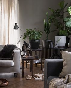 New energy by frame with green plants | Photo & styling : Daniella Witte for Ikea Livet hemma