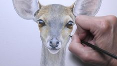 3d Painting, Watercolor Paintings, Step By Step Painting, Watercolor Animals, Watercolor Techniques, Learn To Paint, Pet Dogs, Deer, Moose Art