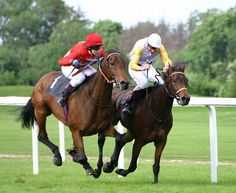 Who loves to watch horse racing? Now you can watch live horse racing stream for free