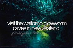 Actually... I already did this so I'm going to change it a little. Visit the watomio glow caves in New Zealand with someone I love