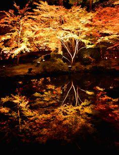 Miyajima, Miyagi, Japan via もう一つの世界 : PHOTOHITO Autumn Leaves
