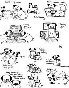 Bah Humpug: Pug Curfew