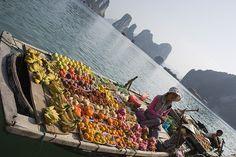 selling fruits (Halong bay - Vietnam)