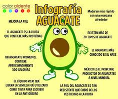 Infografía del Aguac
