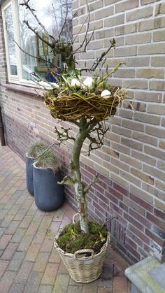 Easter decoration on the porch . Is that too crazy ? I can not say it - Aurele Garegnani - Easter decoration on the porch … Is that too crazy ? I can not say it – Aurele Garegnani - Garden Crafts, Garden Art, Garden Design, Container Plants, Container Gardening, Diy Ostern, Deco Floral, Easter Holidays, Easter Crafts