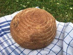 Bread, Fruit, Recipes, Food, Halloween, Glutenfree, Brot, Essen, Eten