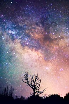 1000 images about galaxy wall paint on pinterest galaxy for How to paint galaxy