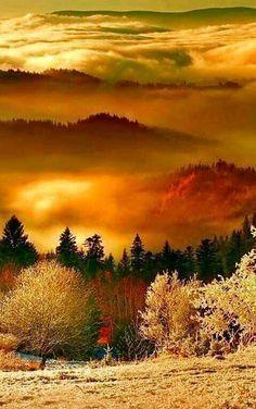 Layers of Autumn | Stunning Nature | Pinterest | Autumn