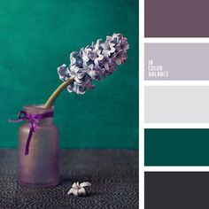 Could I convince Matt to do purple on our walls to go with our fabulous green carpet?