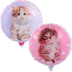 "rachaelhale Glamour Cats 18"" Foil Balloon BirthdayExpress http://www.amazon.com/dp/B00DX3EW82/ref=cm_sw_r_pi_dp_Fpq2tb154D2EX873"