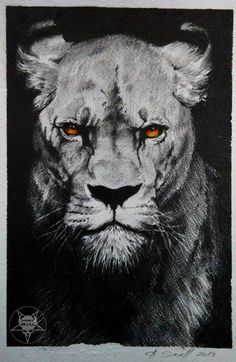 lion by AndreySkull.deviantart.com on @DeviantArt