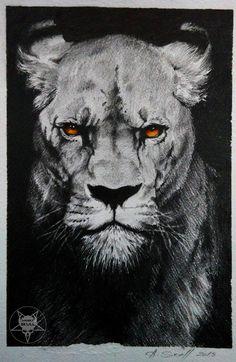 lion by AndreySkull.deviantart.com on @DeviantArt