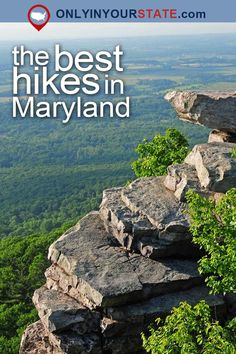 Travel | Maryland | Attractions | Boardwalks | Places To Visit | USA | East Coast | Outdoor | Adventure | Waterfront | Old Line State | Ocean City | Things To Do | Islands | Swamp | Forest | Natural Beauty | Easy Hikes | Promenade | Sanctuary | Fishing Pier | Beaches | Nature | Day Trips | Best Maryland Hikes | Scenic Hikes