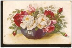 Flora - Flowers - Roses red & white pink rose bouquet drawing - Aquarell Serie 4328/3